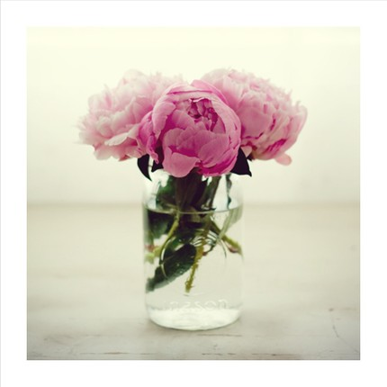 peonies in a mason jar